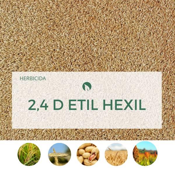 2,4 D ETIL HEXIL