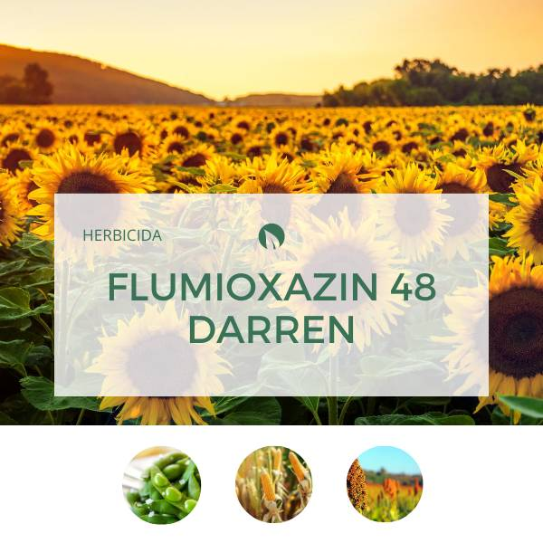 Flumioxazin 48 DARREN
