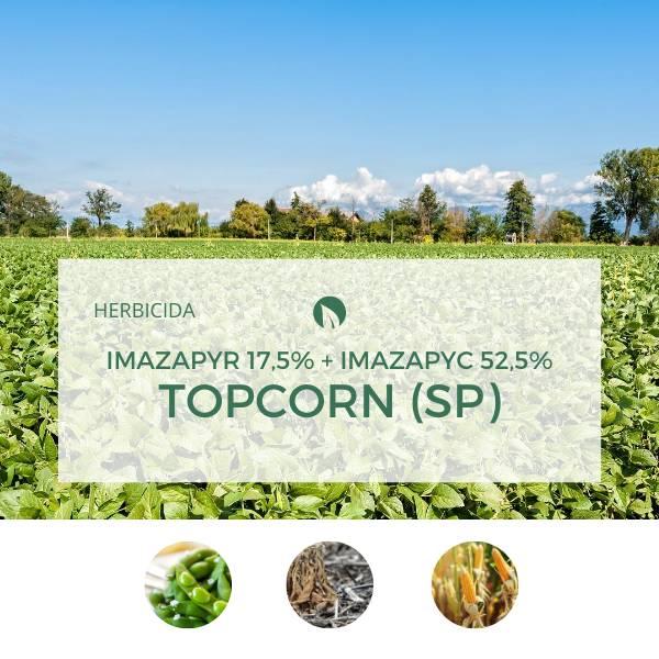 Imazapyr 17,5% + Imazapyc 52,5%TOPCORN (SP)